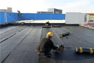 防水卷材和防水涂料优缺点对比分析
